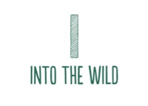 Into the Wild logo