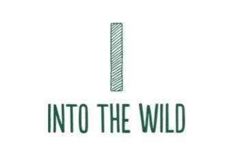 Into the Wild logo
